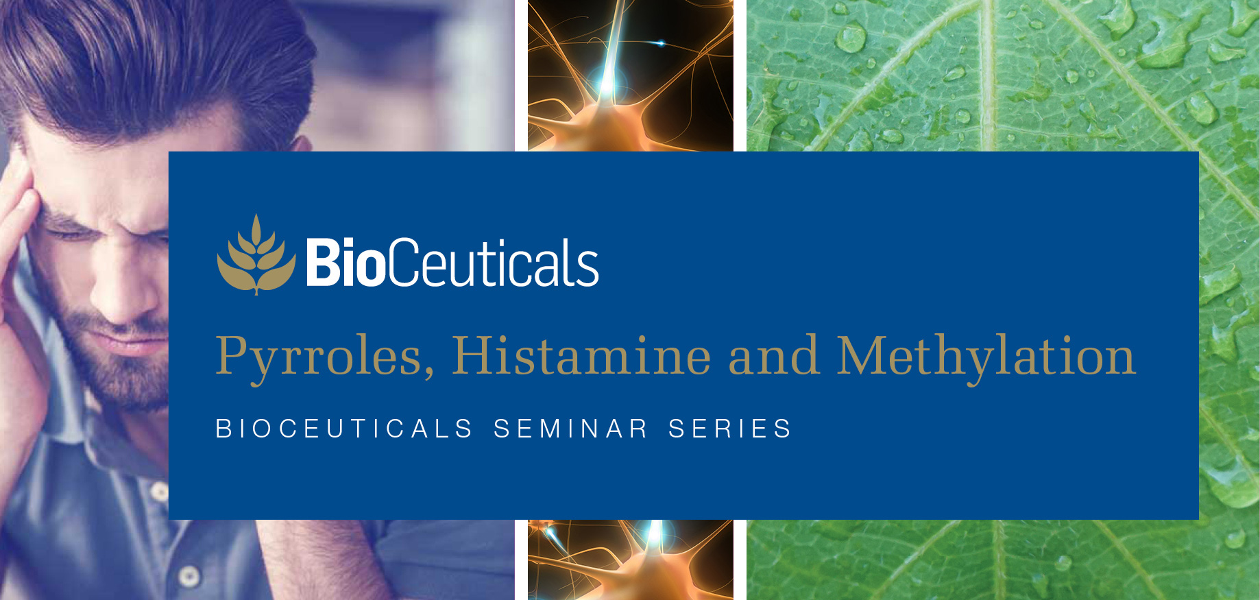 Pyrroles, Histamine and Methylation - Sydney