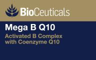 Mega B Q10