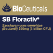 SB FlorActiv 120's