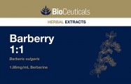 Barberry 1:1