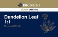 Dandelion Leaf 1:1