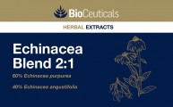 Echinacea Blend 2:1