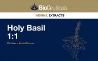Holy Basil 1:1