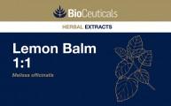 Lemon Balm 1:1