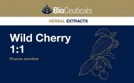 Wild Cherry 1:1