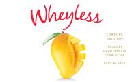 Wheyless Mango Smoothie Flavour