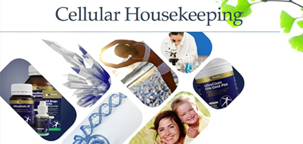 Cellular housekeeping: Heal & Seal, Cleanse & Clear. Presented By: Amie Skilton, ND DBM BHSc (Comp Med)