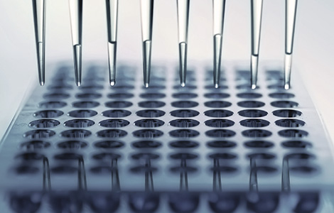 About DNA Testing - BioCeuticals